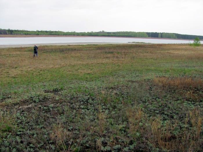 Pallas way in Kurgan region 2012 196