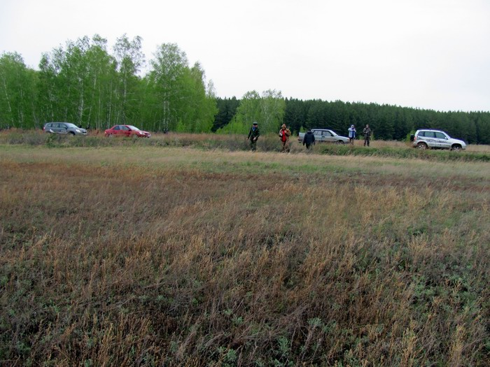 Pallas way in Kurgan region 2012 197