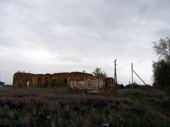 Pallas way in Kurgan region 2012 200