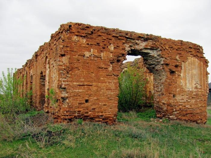 Pallas way in Kurgan region 2012 203