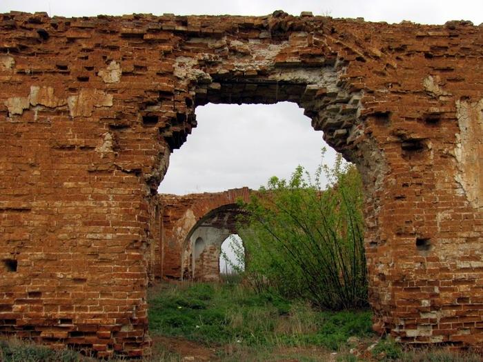 Pallas way in Kurgan region 2012 204