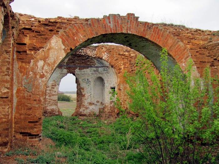 Pallas way in Kurgan region 2012 205