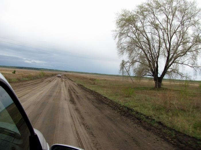 Pallas way in Kurgan region 2012 210