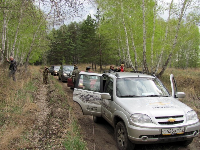 Pallas way in Kurgan region 2012 224