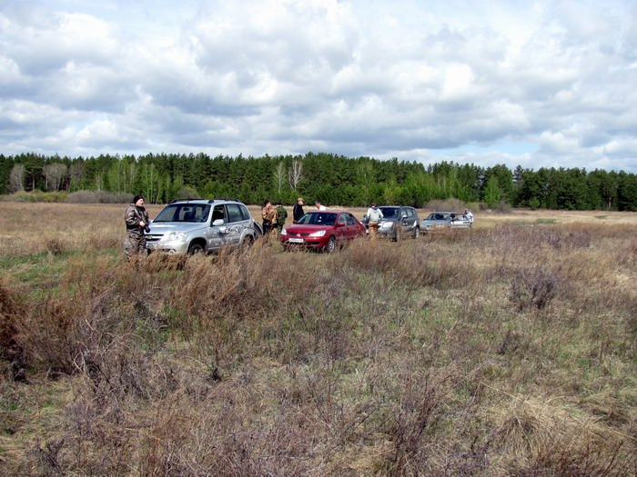 Pallas way in Kurgan region 2012 227