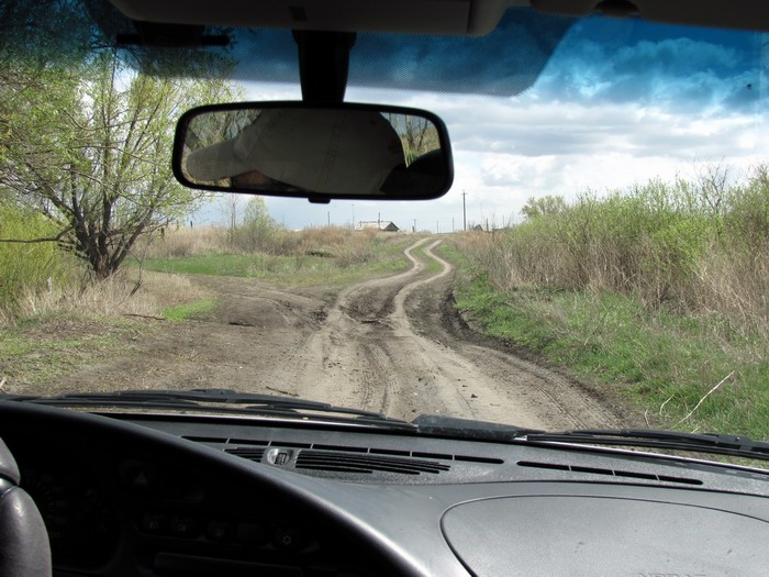 Pallas way in Kurgan region 2012 230