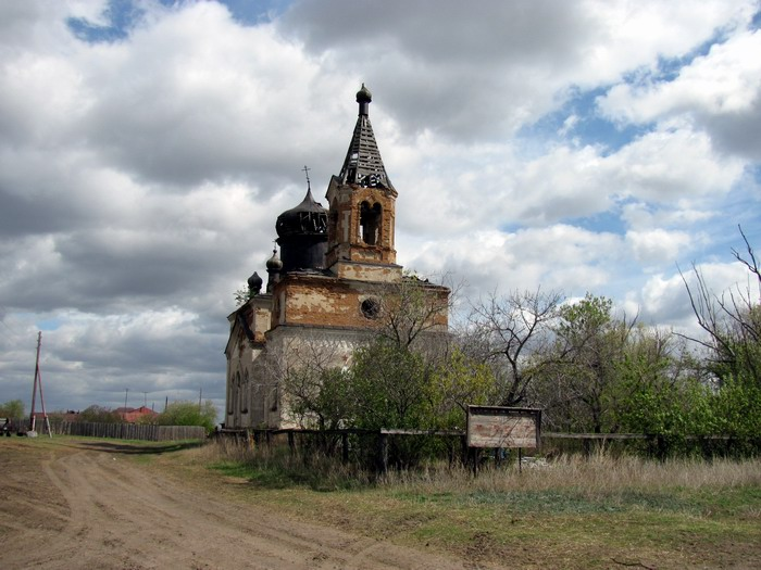 Pallas way in Kurgan region 2012 231