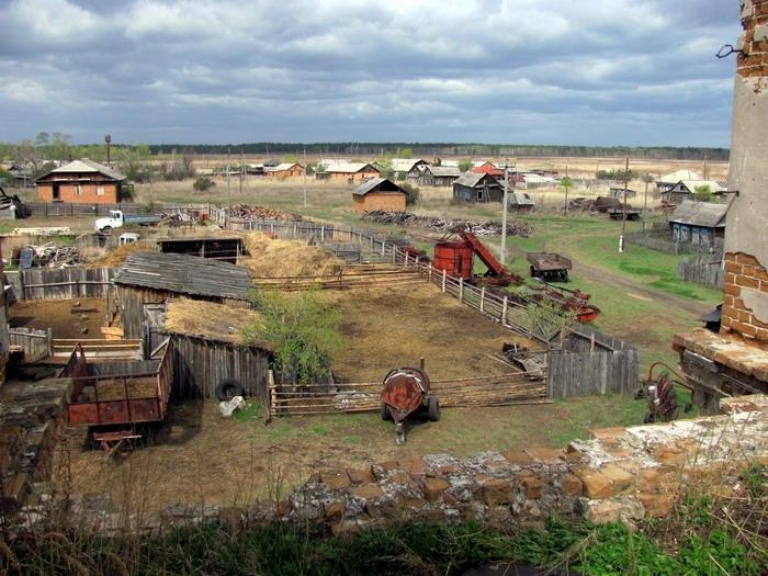 Pallas way in Kurgan region 2012 256
