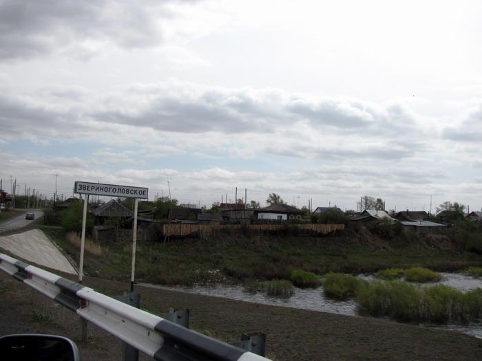 Pallas way in Kurgan region 2012 299 IMG_7963