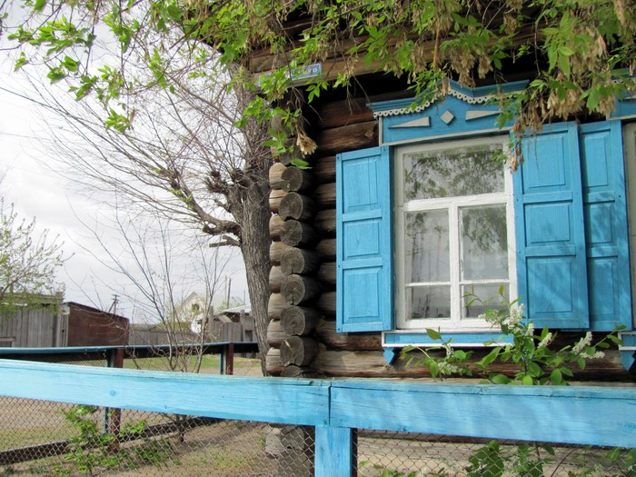Pallas way in Kurgan region 2012 300 IMG_7968