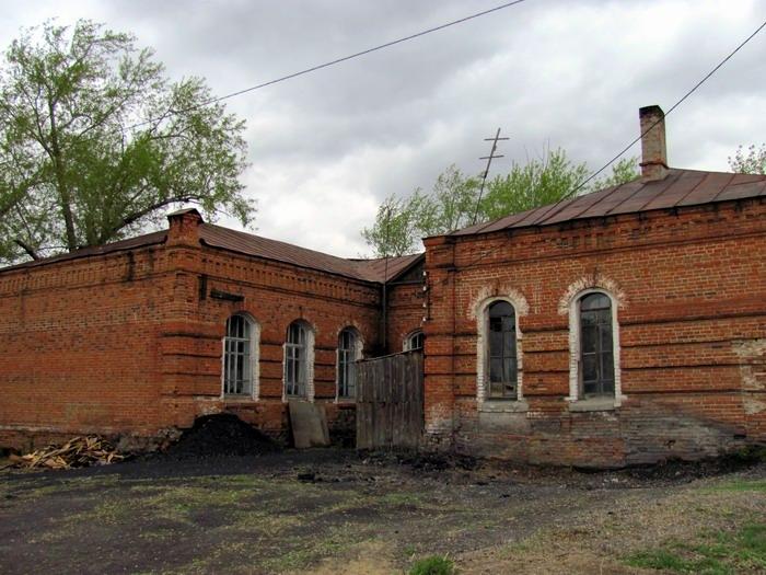 Pallas way in Kurgan region 2012 317 IMG_7988