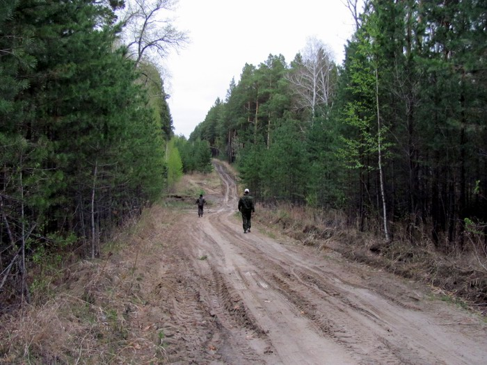 Pallas way in Kurgan region 2012 389 IMG_8080