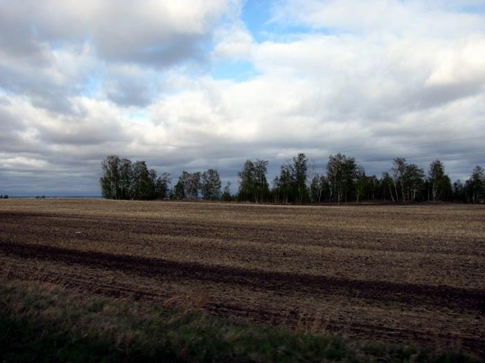 Pallas way in Kurgan region 2012 400 IMG_8102