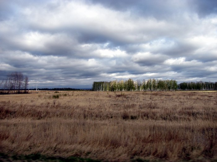 Pallas way in Kurgan region 2012 401 IMG_8108