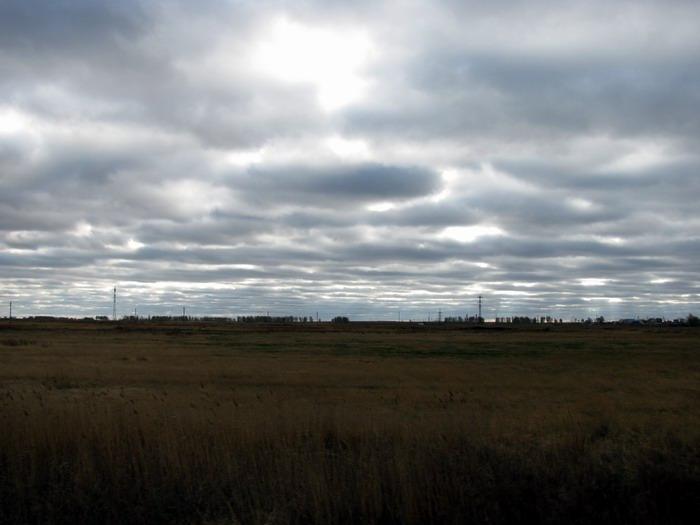 Pallas way in Kurgan region 2012 407 IMG_8118
