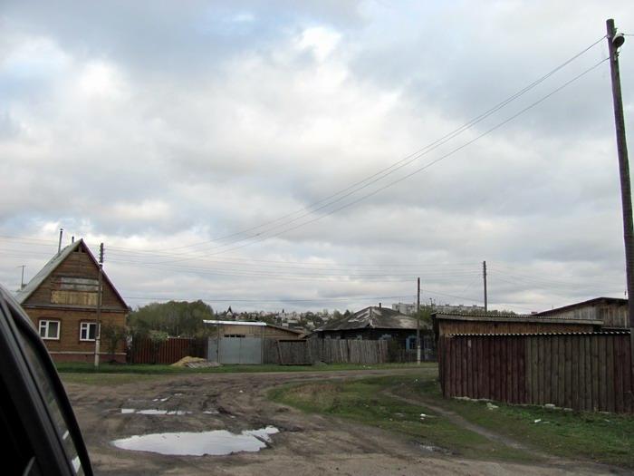 Pallas way in Kurgan region 2012 409 IMG_8120