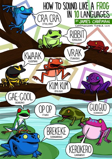 animal-sounds-in-different-languages-james-chapman-10