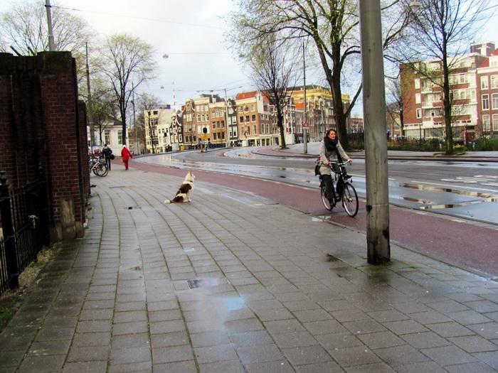 Amsterdam_09_IMG_1917