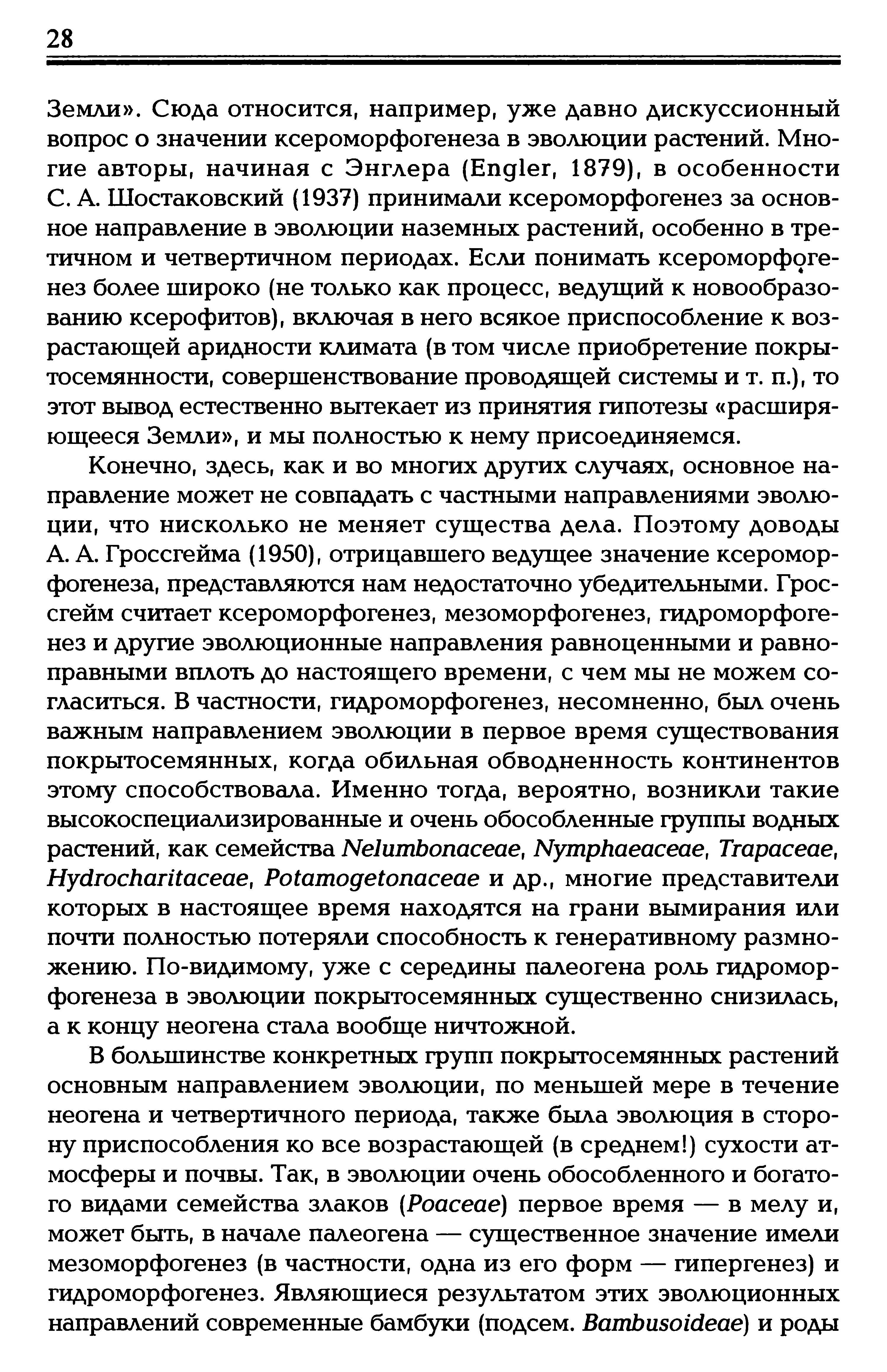 Tzvelev, 2005_1_09.jpeg