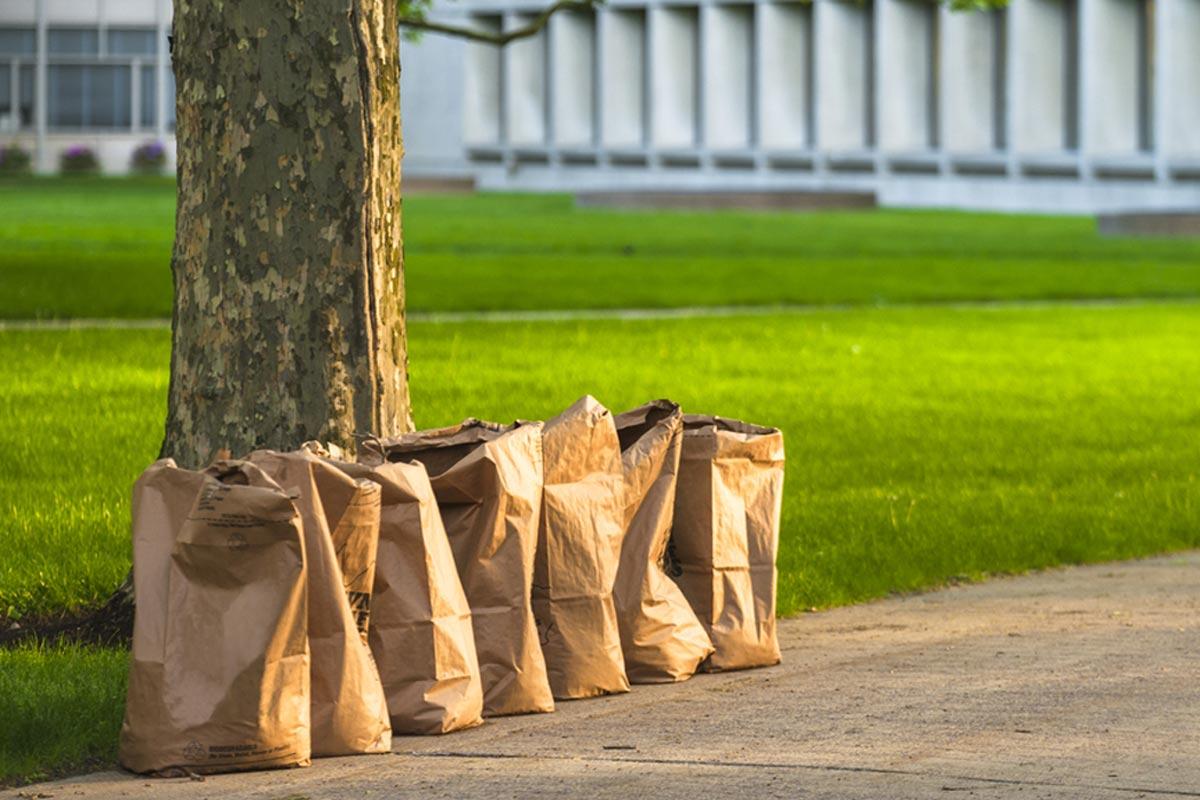 homeguide-bagging-leaves.jpg