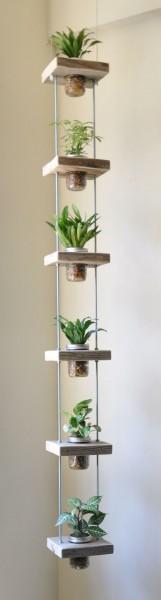 вертикальный сад из банок с растениями