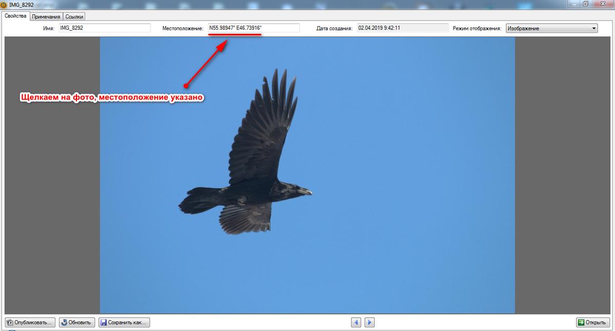 511_geotag_birdchuvashia.png