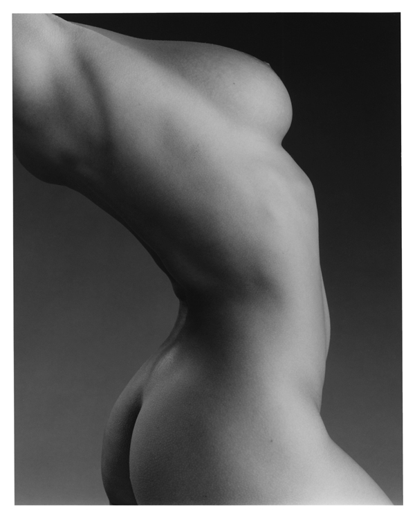 Robert mapplethorpe rosie think, that