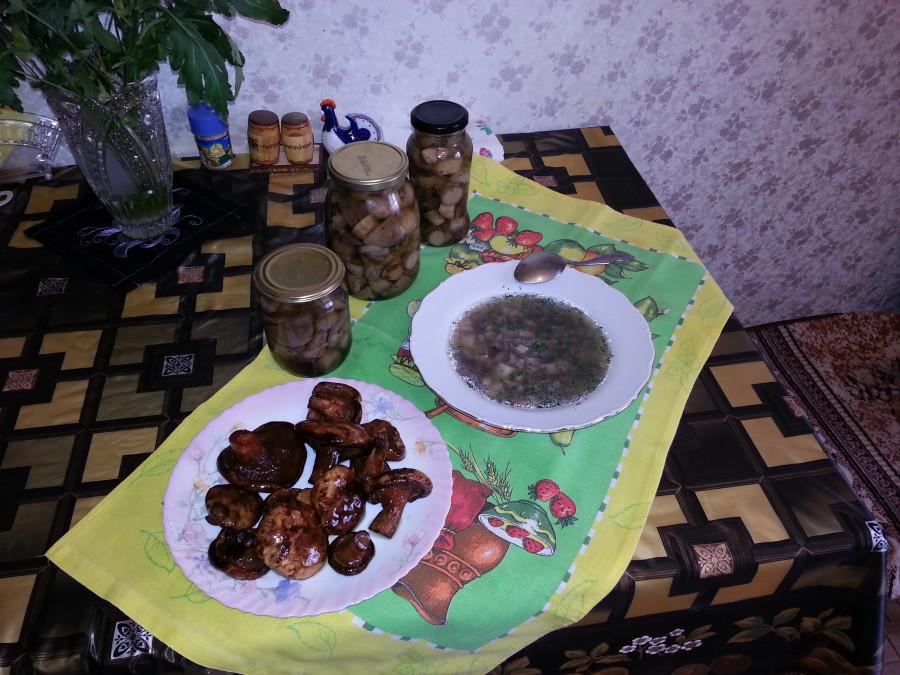 грибной обед