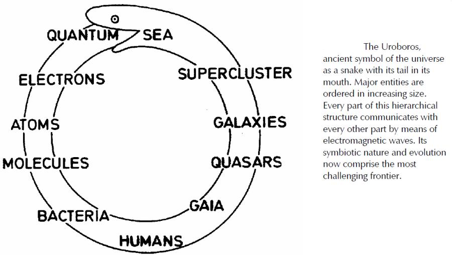Uroboros Galactic Evolution