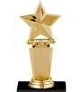 AwardTrphyTiny