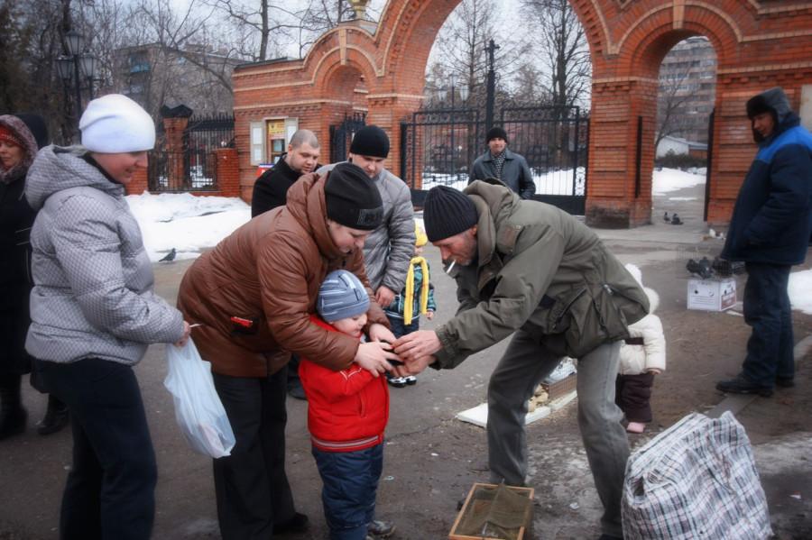 http://ic.pics.livejournal.com/bjorn_varulv/34440464/101520/101520_900.jpg