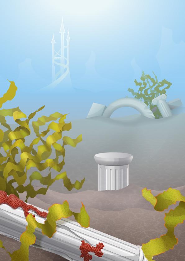 underwater_step3