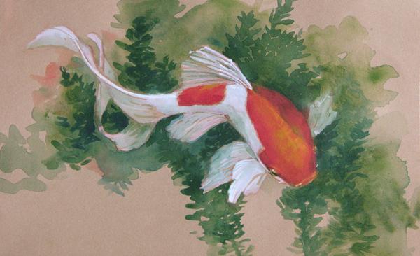 horizontal goldfish web