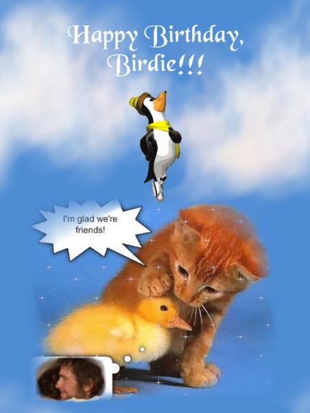Pbird-B-Day-2013-Card