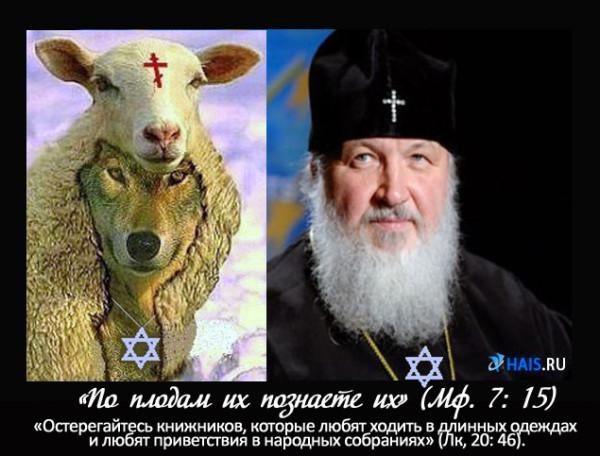 Кирилл-волк