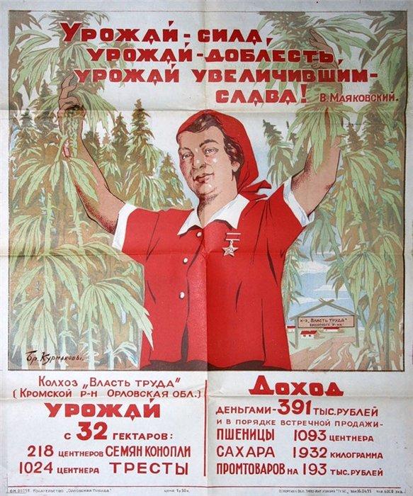 """""""Мотороловцы"""" задержали 15 наркоманов. Среди них оказался """"народный губернатор"""" Губарев"""", - Аброськин - Цензор.НЕТ 8627"""