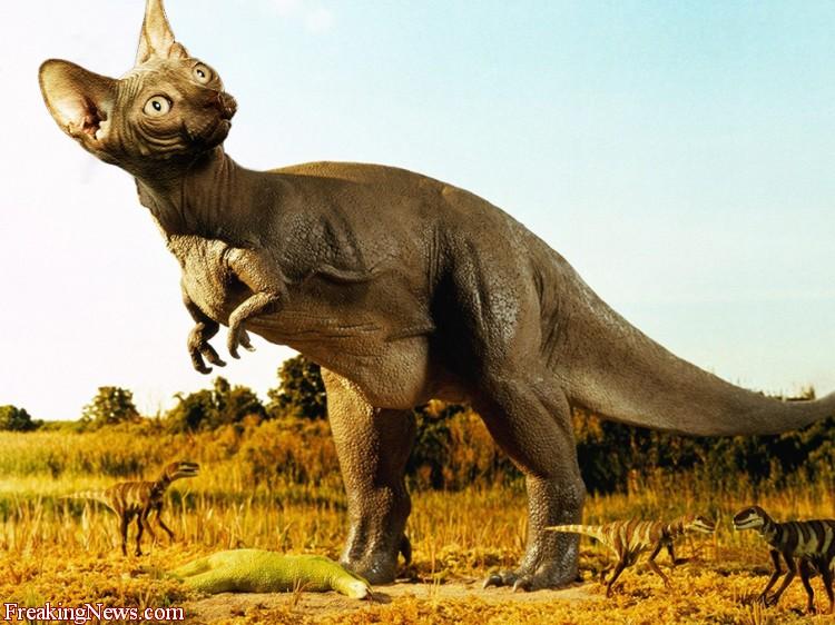 Dino-Cats1