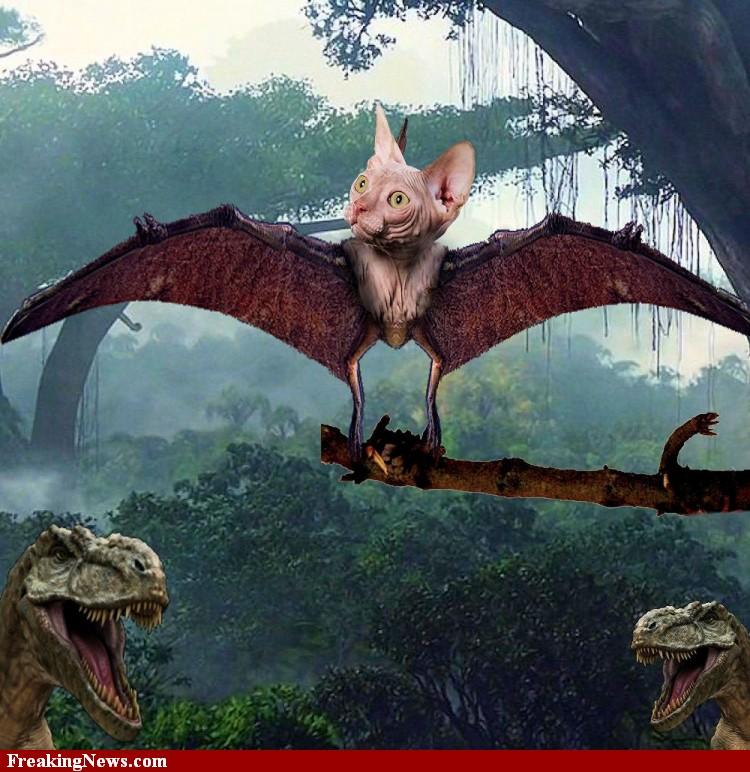 Dinocats7