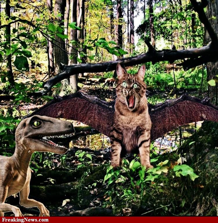 Dinocats11