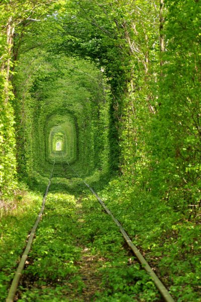 800xtunel