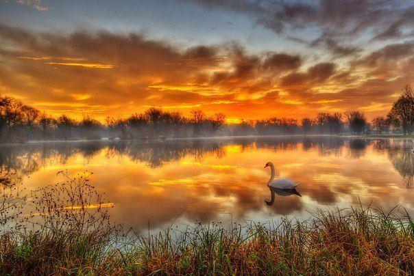 Сказочное озеро недалеко от Загреба.Хорватия.