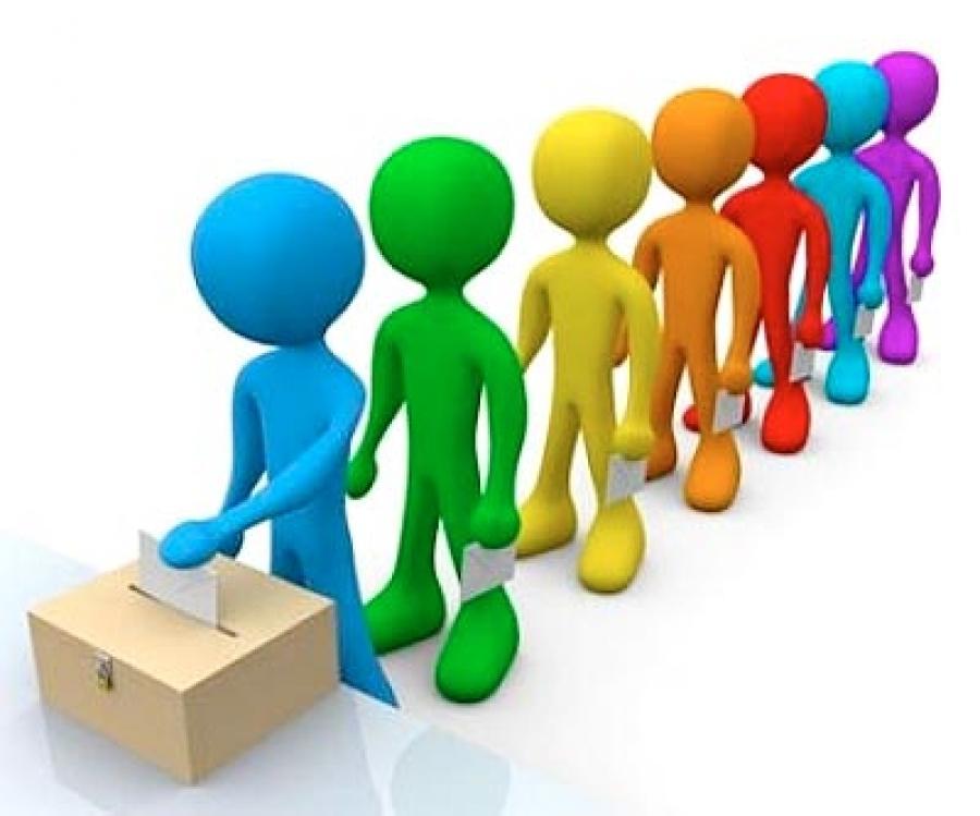 Муниципальные выборы в Приютненском районе