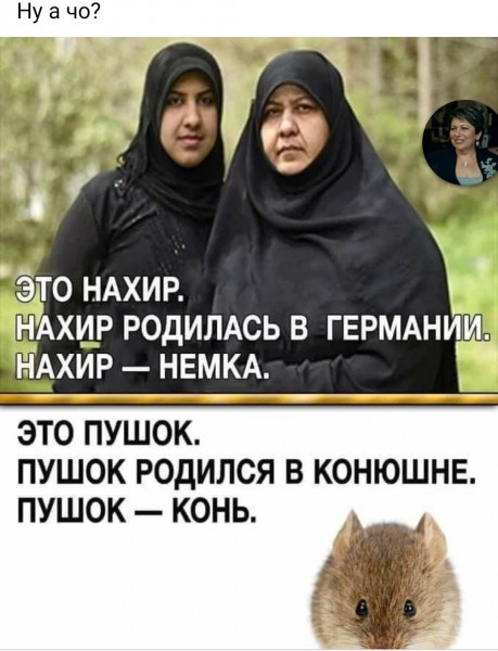 nemka -1