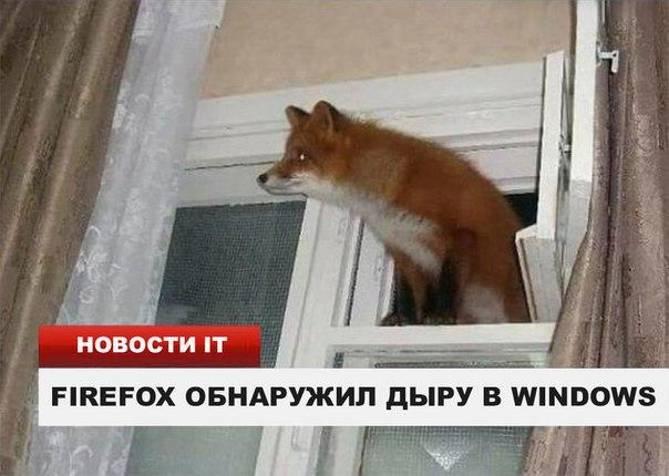 firefox-win