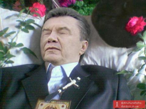 Янукович не приедет на допрос в Киев, поскольку боится за свою жизнь, - адвокат беглого экс-президента - Цензор.НЕТ 3666