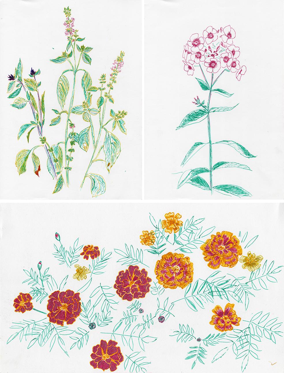 flowers2016