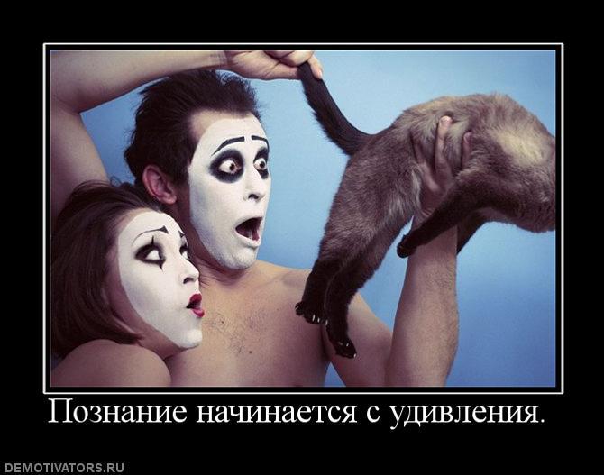 381209_poznanie-nachinaetsya-s-udivleniya