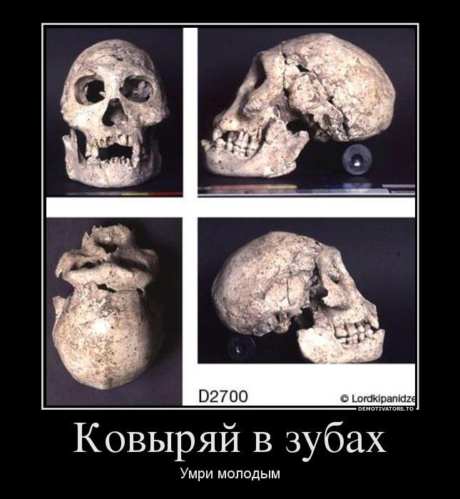 447133_kovyiryaj-v-zubah_demotivators_to