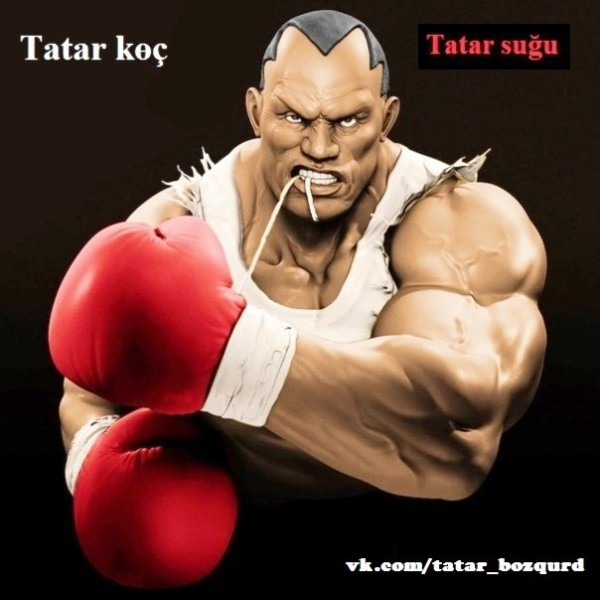 Tatar sugu