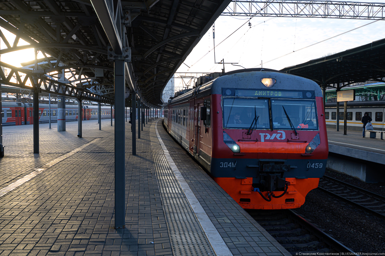 DSC_9305.jpg